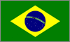 Curs Valutar Ralul Brazilian